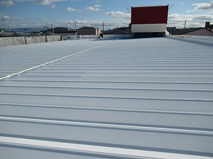 maruzen after