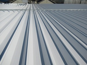 maruzen after1