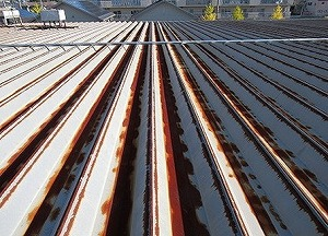 maruzen before