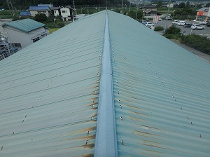 神戸天然物化学 施工前