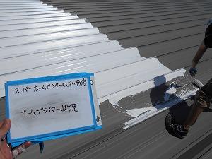 DSCN9983プライマー塗装