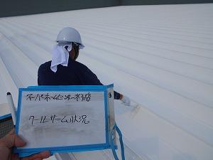 DSCN9989クールサーム塗装
